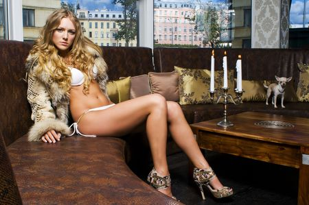 long hair chihuahua: Portrait of the beautiful blonde. She is sitting in the restaurant with her dog