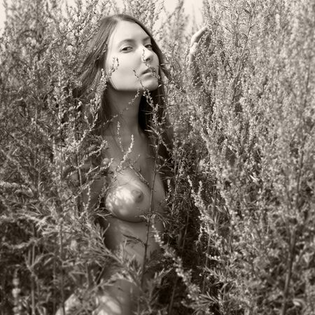 women breast: Portrait of the beautiful naked woman among the grass. monochrome image,