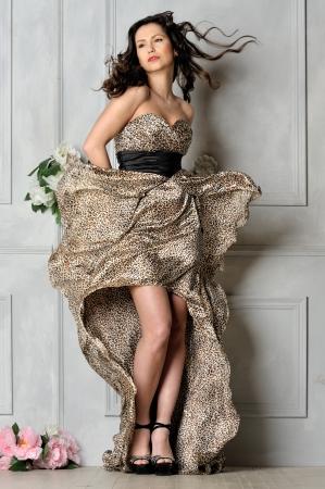 belle brunette: Portrait de la belle femme en robe léopard longtemps. Studio de prise de vue. Banque d'images