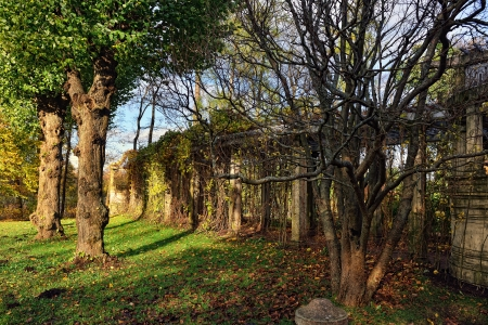 catherine: Autumn landscape with old colonade in Catherine garden, Pushkin, Russia. Stock Photo