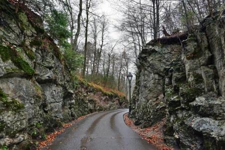 Stone road in the forest near Hohenschwangau castle in Germany. Raining autumn day photo