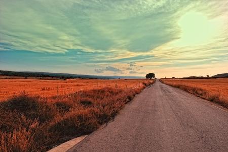 grain fields: Landscape with rural road in Spain.
