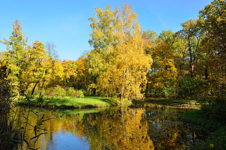 pushkin: Autumn landscape with pond in Catherine garden, Pushkin, Russia Stock Photo