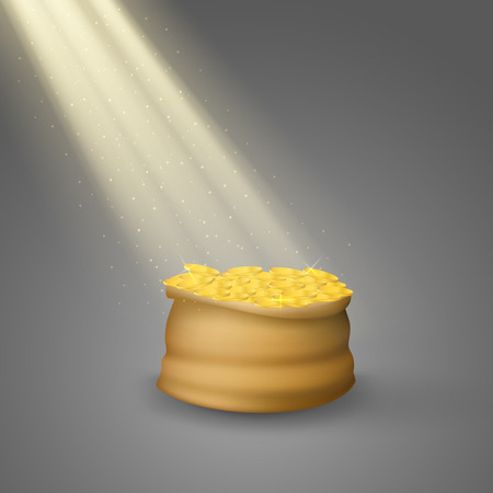 rays light: Bag of coins with rays of light. Rays of light fall on the bag of coins.