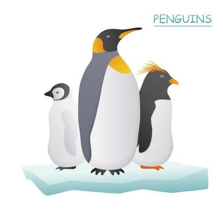 shattered glass: Penguins on ice flow illustration.