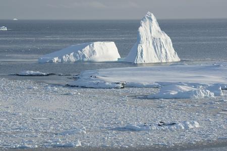 Icebergs near the island of ice fields. photo