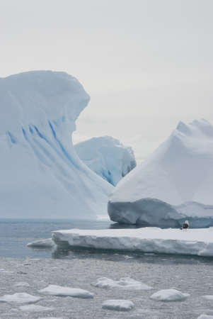 Icebergs and ice floes in the waters of the Antarctic winter. photo