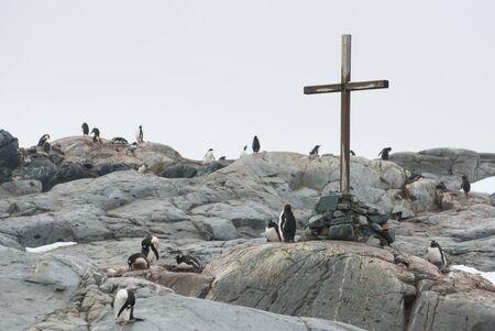 memorial cross: cruz conmemorativa en memoria de los muertos de los investigadores de la Península Antártica