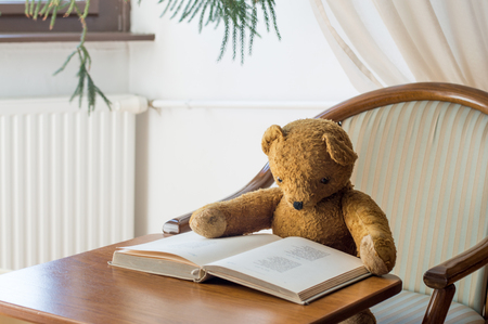 Teddy bear reads a book in the library - studying scene Фото со стока