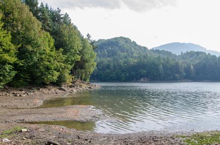 A lake in Transylvania, beautiful landscape from Romania, Europe