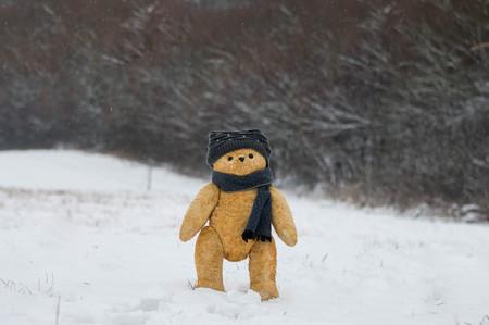 Teddy bear walks in winter forest - European scene