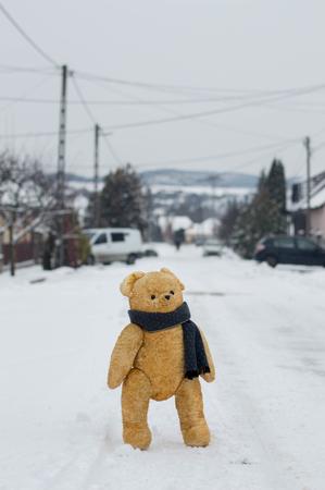 Teddy bear walks on the street in the winter