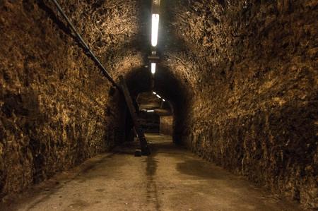 Endless floor in a cellar - with rustic brick walls - European underground scene for Halloween