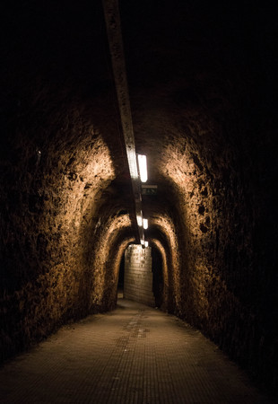 Endless floor in a cellar - with rustic brick walls - European underground scene for Halloween