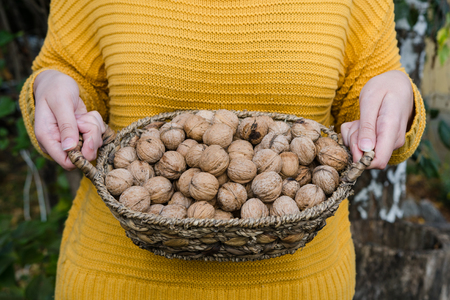 Girl holding in her hand a corf of walnuts in yellow knitted sweater - autumn lifestyle picture Banque d'images - 114652830