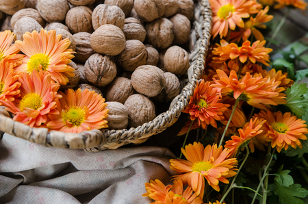 Walnut in a basket - traditional vintage interior from the garden table - Europe autumn scene Banque d'images - 114536884