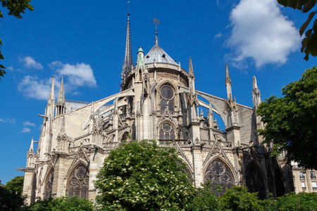 buttresses: Notre Dame Cathedral, the Cite island in Paris.