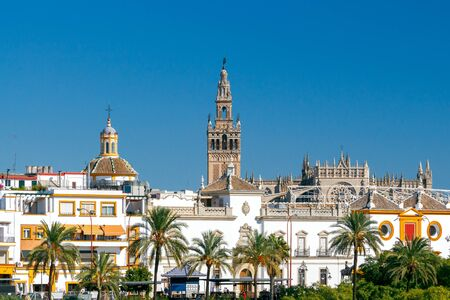 Tower Giralda of the Cathedral in Seville. Spain. Andalusia.