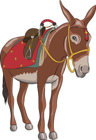 A donkey with a saddle. Illustration