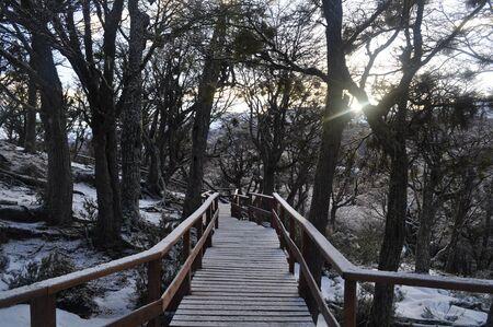 dais: Ushuaia footway