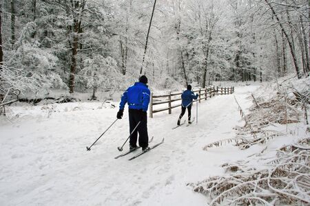 A couple cross-country ski amid a recent beautiful snowfall. Banco de Imagens - 5773266