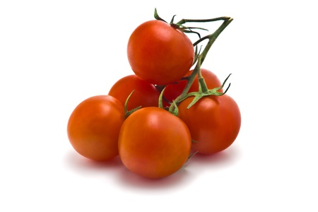 sprig of of ripe, juicy cherry tomatoes on a white background photo