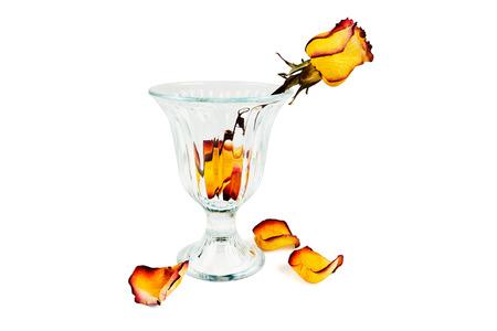 sapless: Vaso di vetro con le rose secche e petali di caduta secca su uno sfondo bianco Archivio Fotografico