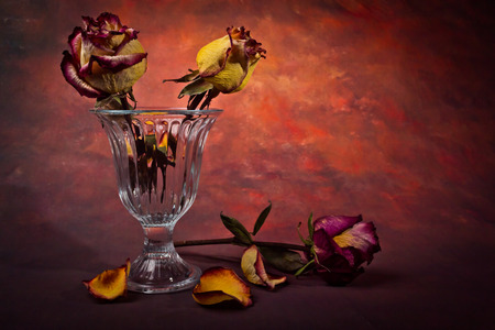 sapless: Glass vase with dry roses and petals fallen dry on a dark background