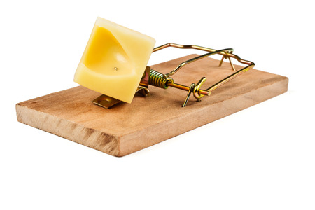 cocked: Cocked mousetrap charged piece of cheese for bait