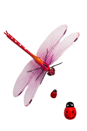primitivism: Artificial dragonfly and ladybug isolated on white background
