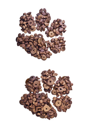cat food: Dry cat food is arranged in a feline footprint and isolation on a white background