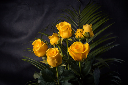 roses garden: Bouquet of yellow roses and green leaves on a dark background