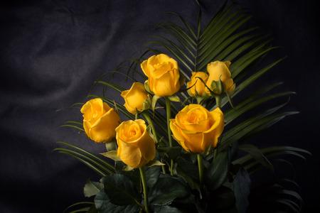 rosas amarillas: Ramo de rosas amarillas y hojas verdes sobre un fondo oscuro