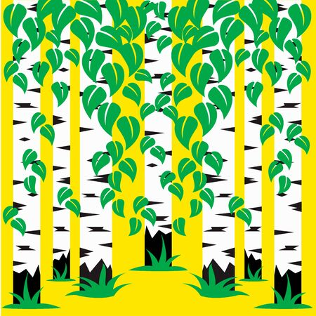 Stock Illustration Birch grove, birch trunks and leaves on a yellow background