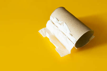 A finished toilet paper roll on a yellow background
