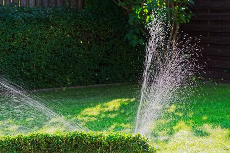 Irrigation of green lawn in a garden on sunny day. Stapelfeld, Germany