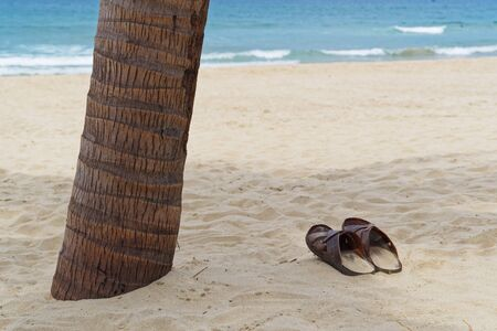 Vacation concept. Pair of Sandals on sandy beach beside of palm tree trunk Standard-Bild