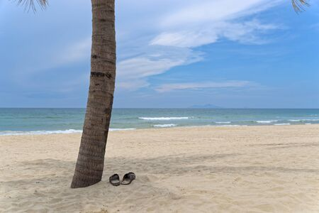 Panoramic view of palm tree and pair of sandals on sandy beach against sky
