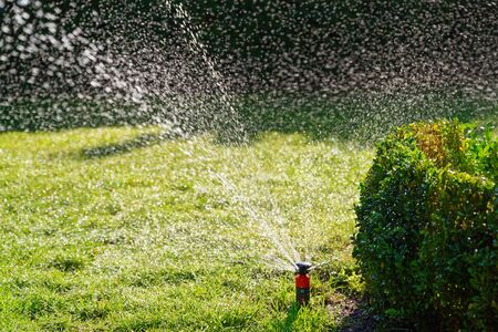 Watering the green lawn in a garden on sunny day. Stapelfeld, Germany