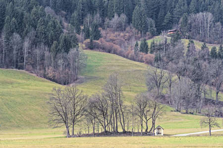 Panoramic view of forested hill in Ziller Valley, Austria
