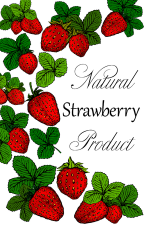 Hand drawn poster with strawberries with place for text. Background design for tea, juice, natural cosmetics, sweets, health care products, advertising, card or menu. Vector fruits illustration. Ilustrace