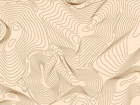 Abstract wireframe background topography contour. 3d futuristic vector illustration for presentations Ilustrace