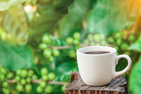 witte kopje koffie op houten plaat over wazig verse koffiebonen in donkere achtergrond.