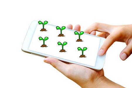 vrouw hand houden en touchscreen van slimme telefoon, tablet, mobiele telefoon met zaailing opgroeien op scherm geïsoleerd op wit. abstracte achtergrond van aarde dag concept Stockfoto