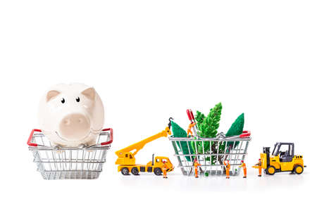 Piggy bank with miniature worker passenger Christmas box and pine cone by truck and forklift to shopping basket isolated on white background Stock Photo