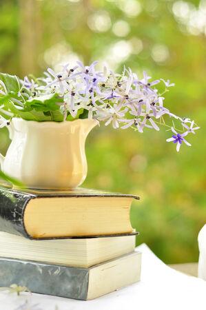 volubilis: petrea volubilis flower on old book
