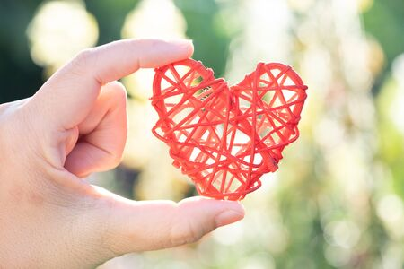 hand hold heart shape