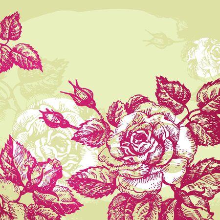 vintage floral: Floral background with roses