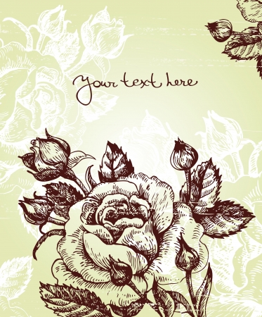 hand drawn flower: Floral background with roses