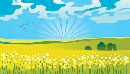 Summer landscape  Stock Vector - 15907100